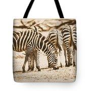 Vintage Zebras Tote Bag
