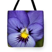 Viola Named Sorbet Blue Heaven Jump-up Tote Bag by J McCombie
