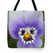 Viola Named Sorbet Marina Baby Face Tote Bag