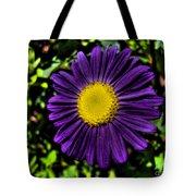 Violet Aster Tote Bag
