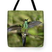 Violet-fronted Brilliant Tote Bag