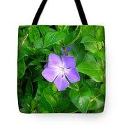 Violet Herbaceous Periwinkle Tote Bag