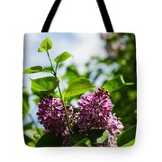 Violet Lilacs And A Bee Tote Bag
