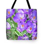 Violet Lilies Tote Bag