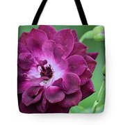 Violet Rose And Buds Tote Bag