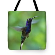 Violet Sabrewing Hummingbird Tote Bag