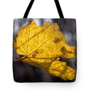 Virgin Gold - Featured 3 Tote Bag