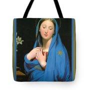 Virgin Of The Adoption Poster Tote Bag