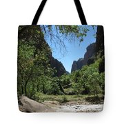 Virgin River  Zion Np Tote Bag