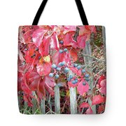 Virginia Creeper Fall Leaves And Berries Tote Bag