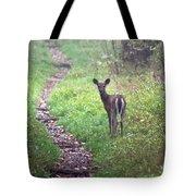 Virginia - Shenandoah National Park - White Tailed Deer Tote Bag