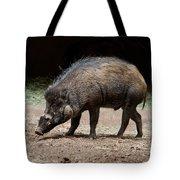 Visayan Warty Pig Tote Bag