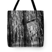 Vishnu Schist Tote Bag