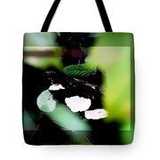 Vision Of Mushrooms Tote Bag