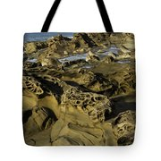 Visions Of Nature 4 Tote Bag