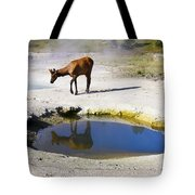 Visitor At West Thumb Basin Tote Bag