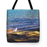 Visitor - Lake Tahoe Tote Bag