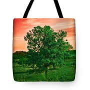 Vivid Blood Red Sky Tote Bag