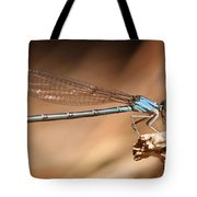 Vivid Dancer Damsel Tote Bag
