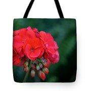 Vividly Red Geranium Tote Bag