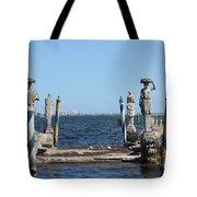 Vizcaya - The Pier Tote Bag