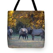 Vocalization Tote Bag