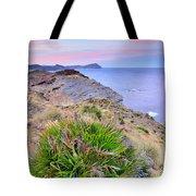 Volcanic Desert At Sunset Tote Bag