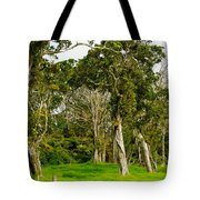 Volcano Ranch Tote Bag