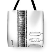 Voltaic Pile, 1800 Tote Bag by Granger