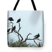 Vulture Club Tote Bag
