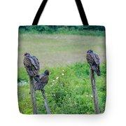 Vulture Fence Line 3 Tote Bag