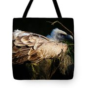 Vulture Resting In The Sun Tote Bag