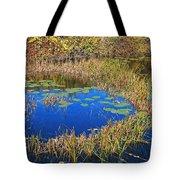 Wachusett Meadows 2 Tote Bag