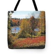 Wachusett Meadows 3 Tote Bag