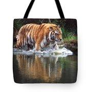 Wading Tiger Tote Bag
