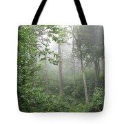 Waft Of Mist - Shenandoah Park Tote Bag