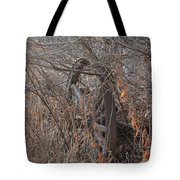 Wagon Wheel_7449 Tote Bag