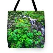 Wahkeena Falls In The Columbia River Gorge Tote Bag