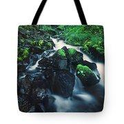 Wahkeenah Falls Columbia River Gorge Nsa Oregon Tote Bag