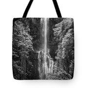 Wailua Falls 2 Tote Bag