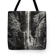 Wailua Falls 3 Tote Bag