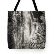 Wailua Waterfall 3 Tote Bag