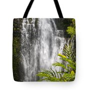 Wailua Waterfall Tote Bag