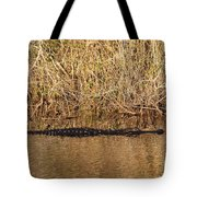 Wait Patiently - Alligator Tote Bag