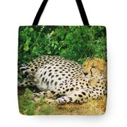Waiting For Baby Cheetahs Tote Bag
