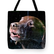 Waiting For Dad To Come Home Tote Bag