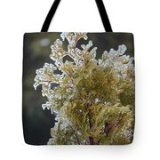 Waiting For Spring - Ice Storm - Closeup 2 Tote Bag