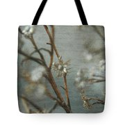 Waiting For Spring 1 Tote Bag