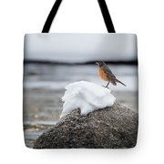 Waiting For Spring Square Tote Bag