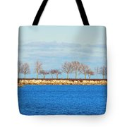 Waiting For Summer - Trees At The Edge Tote Bag